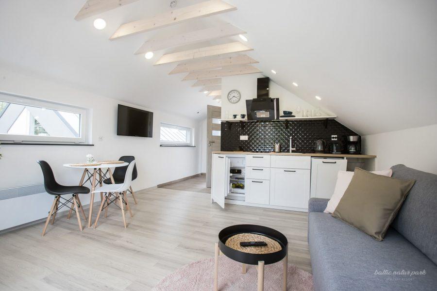 apartament-przestronny-5 (16)